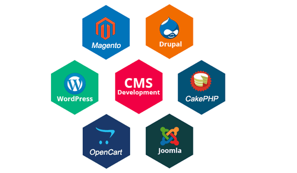 content management system in W3career